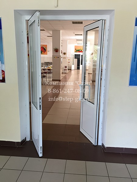 Алюминиевые маятниковые двери